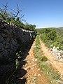 2017-04-06 Country lane and dry stone wall, Malhão, Albufeira.JPG