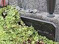 2017-09-10 Friedhof St. Georgen an der Leys (185).jpg