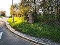 2021-04-23 Radtour bei Großrinderfeld 14.jpg