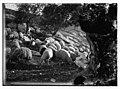 23rd Psalm, sheep LOC matpc.10085.jpg