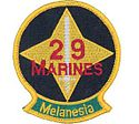29th Marine Regiment.jpg