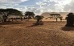 2RGR STTT In Kenya MOD 45162902.jpg