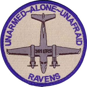 361st Expeditionary Reconnaissance Squadron MC-12 Morale.png