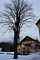 38064 Colpi TN, Italy - panoramio (11).jpg
