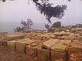 39CESAEREE today TIPAZA .The ancient Roman city in Algeria.jpg