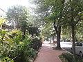 7th Street NE in the Capitol Hill neighborhood Washingtion DC.jpg