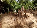 Ação dos pingos da chuva sobre a areia, outro ângulo.jpg