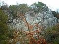 ALİBEY SAHA - panoramio - MERMERCİ ÖZGÜR (1).jpg
