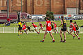 ANZAC Day Commemorative Games Wagga Tigers v Collingullie GP Demons at Robertson Oval.jpg