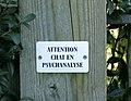 ATTENTION CHAT EN PSYCHANALYSE - geograph.org.uk - 1069600.jpg