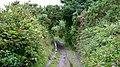 A Cornish Mining Walk - geograph.org.uk - 589212.jpg