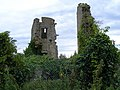 A Dangerous Ruin - geograph.org.uk - 1513541.jpg