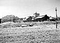 A GENERAL VIEW OF KIBBUTZ TIRAT ZVI. מראה כללי של קיבוץ טירת צבי בעמק בית שאן.D393-069.jpg