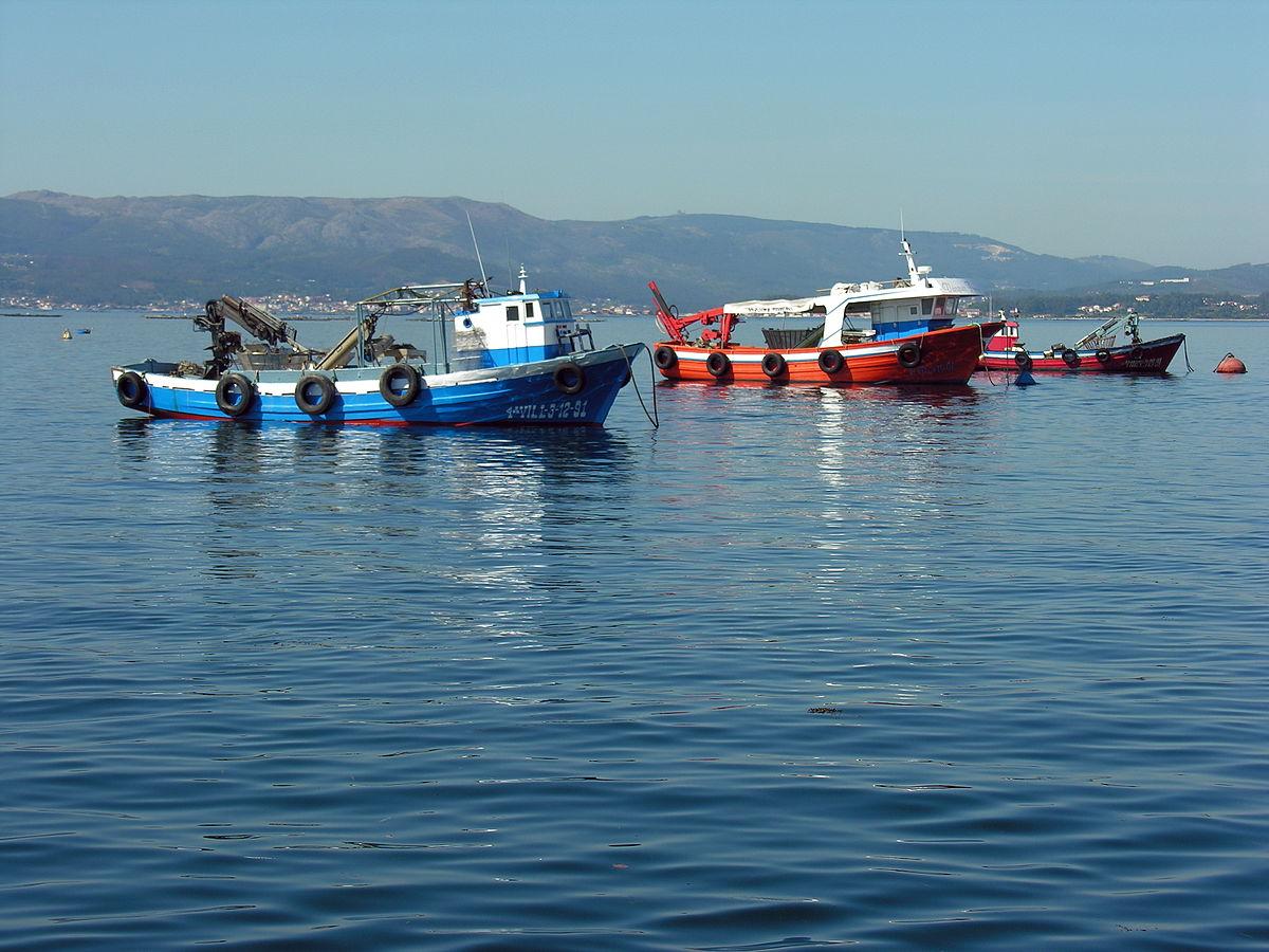 Pesca artesanal wikipedia la enciclopedia libre for Actividades que se realizan en una oficina wikipedia