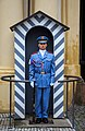 A Prague Castle guard.jpg