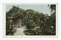 A Rose Covered Cottage, Pasadena, Calif (NYPL b12647398-62307).tiff