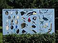A Silesian Zoological Garden 28.JPG