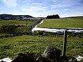 A copse near Essie - geograph.org.uk - 1033549.jpg