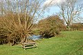 A picnic spot beside the River Leam, Hunningham - geograph.org.uk - 1573886.jpg