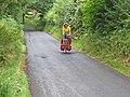 A tough climb on Hadrian's Cycleway - geograph.org.uk - 207897.jpg