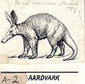 Aardvark (PSF).jpg