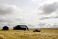 Abandoned farm in Alberta040.jpg