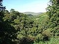 Above the Mennock Water - geograph.org.uk - 532764.jpg