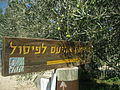 Achiam museum in the old Roman thermal baths of Shuni (Jabotinsky Park) in Binyamina 01.JPG