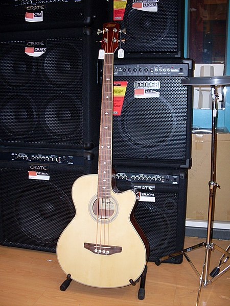 File:Acoustic bass guitar 1.jpg