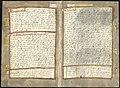 Adriaen Coenen's Visboeck - KB 78 E 54 - folios 137v (left) and 138r (right).jpg