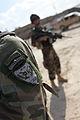 Afghan Commandos shoulder patch.jpg