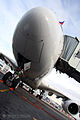 Airbus A380 (F-WWDD) at Domodedovo International Airport (248-19).jpg
