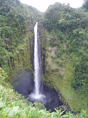 Akaka Falls State Park - Akaka Falls on Kolekole Stream