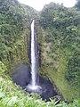 Akaka Falls Hawaii.jpg