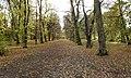 Alexandra Park - geograph.org.uk - 8456.jpg