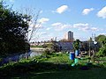 Allotments in London E15.jpg