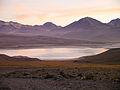 Altiplano, Bolivien (11214264503).jpg