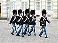 Amalienborg Palace guards - DSC07134.JPG