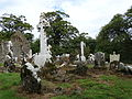 Ancient Graveyard, Coole Upper Two Churches, North Cork.JPG