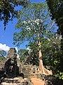 Angkor - Banteay Kdei 3.jpg