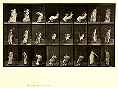 Animal locomotion. Plate 518 (Boston Public Library).jpg