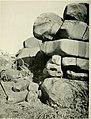 Annals of the South African Museum - Annale van die Suid-Afrikaanse Museum (1929) (18411157992).jpg
