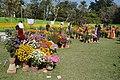 Annual Flower Show - Agri-Horticultural Society of India - Alipore - Kolkata 2013-02-10 4734.JPG
