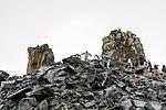 Antarctic Majesty (24940523615).jpg