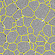 Microscopy image of grains of a material with boundaries displayed in yellow overlay