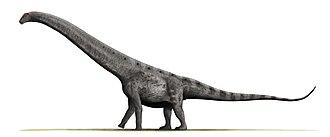 Cenomanian - Argentinosaurus