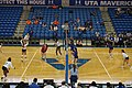 Arkansas State vs. UT Arlington volleyball 2019 40 (in-match action).jpg