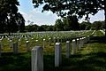 Arlington National Cemetery, Gravestones 1.JPG