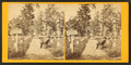 Arlington cemetery, from Robert N. Dennis collection of stereoscopic views.png