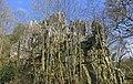 Armorican Sandstone Outcrops (26252177482).jpg